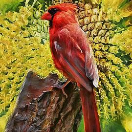 Tina  LeCour - Red Cardinal