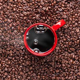Steve Gadomski - Red Coffee Cup