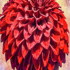 Jean OKeeffe Macro Abundance Art - Red Dahlia