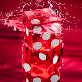 Steve Gadomski - Red Dice Splash
