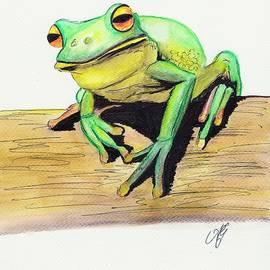 Anne Gardner - Red eyed tree frog 2