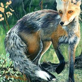Barbara Jewell - Red Fox- Caught in the Moment