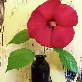 Marsha Heiken - Red Hibiscus Crackle
