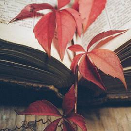 Red ivy - Jelena Jovanovic