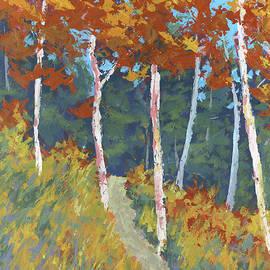 David King - Red Mountain Aspens