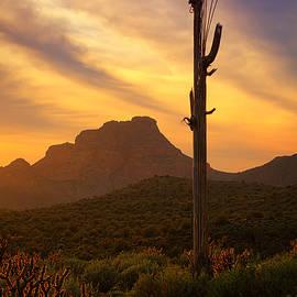 Saija  Lehtonen - Red Mountain Sunset