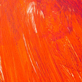 Red paint - Tom Gowanlock