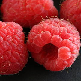 Jeff Roney - Red Raspberries
