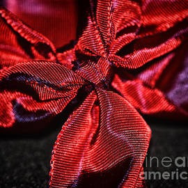red ribbon - SK Pfphotography