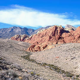 Carol  Lux Photography - Red Rock Canyon In Nevada