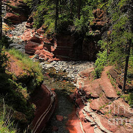 Vickie Emms - Red Rock Canyon Waterton