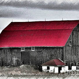 Miss Dawn - Red Roof Barn