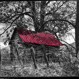 Debra and Dave Vanderlaan - Red Roof Black and White