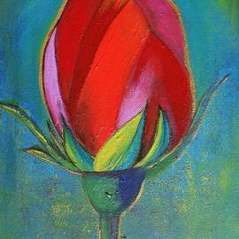 Jean L Fassina - red rose bud under Puglia
