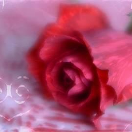Diane Alexander - Red Rose Love