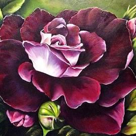 Maryamsadat Shakeri - Red Rose