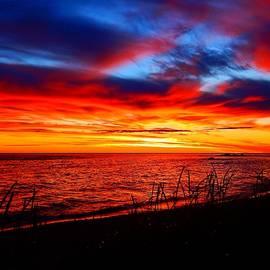 Dan Comeau - Red Sea at Dawn