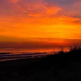 Tom Montgomery - Red Sky at Night