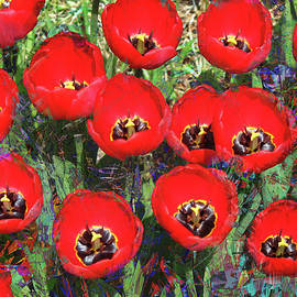 Rayanda Arts - Red Summer Poppies - Floral Landscape