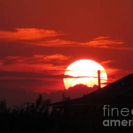 Lorita Montgomery - Red Sunset