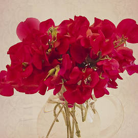 Sandra Foster - Red Sweet Pea Bouquet