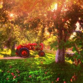Joann Vitali - Red Tractor on an Apple Farm