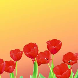 Kristin Elmquist - Red Tulips