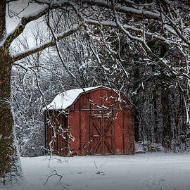 Randall Nyhof - Red Utility Barn among the trees during a snowstorm