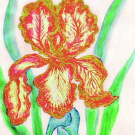 Irina Afonskaya - Red-yellow iris, painting