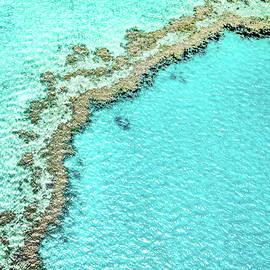 Reef Textures - Az Jackson