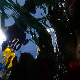 Catherine BELLOEIL - Reflection 3 The Yellow snorkel