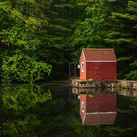 Karol  Livote - Reflections At Stewart Woods
