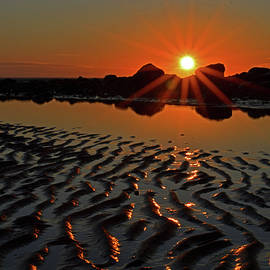 Dianne Cowen - Reflections From a Cape Cod Beach