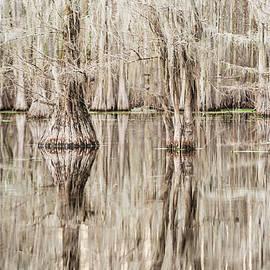 Scott Pellegrin - Reflections in Black Bayou Swamp