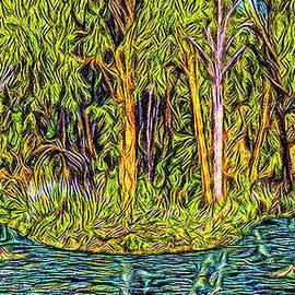 Joel Bruce Wallach - Reflections In Deep Forest