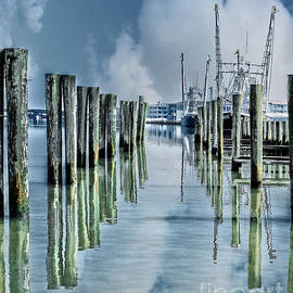 Tom Gari Gallery-Three-Photography - Reflections in the Marina