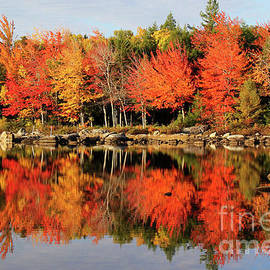 Katie W - Reflections of a Maine October