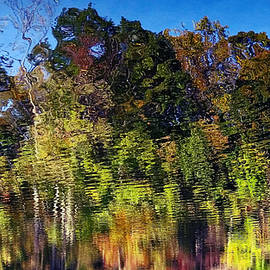 Suzanne Stout - Reflections of Autumn