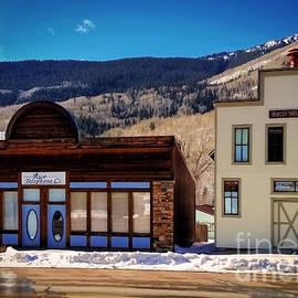 Janice Rae Pariza - Reflections of Rico Colorado