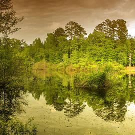 Felix Lai - Reflections, Spring in Augusta, GA