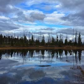 Tabe Aulikki Knight - Reflections