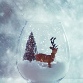 Reindeer In Glass Snow Globe  - Amanda And Christopher Elwell