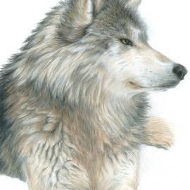 Carla Kurt - Relaxing Wolf