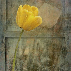 Rene Crystal - Remember The Tulips...