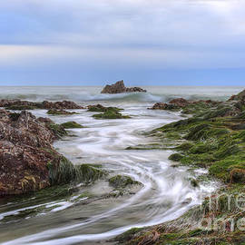 Eddie Yerkish - Replenish The Tide Pools