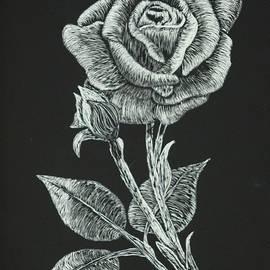 Louise Williams - Reverent Rose
