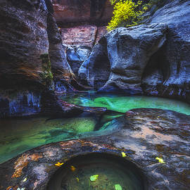 Peter Coskun - Revived