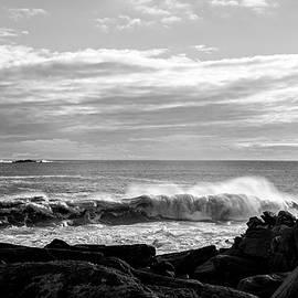 Nancy de Flon - Rhode Island Rocks and Waves
