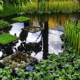 RHS Chelsea World Vision Garden