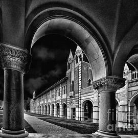 Norman Gabitzsch - Rice Arches